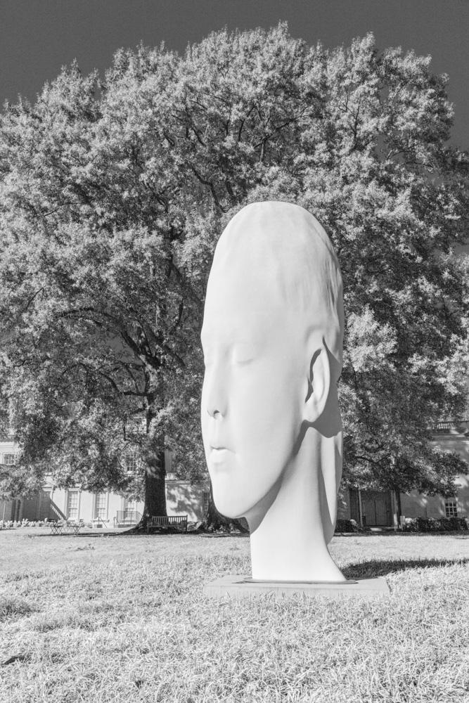 Chole by Juame Plensa. 2016.  Virginia Museum of Fine Arts . Canon EOS 5DS R.