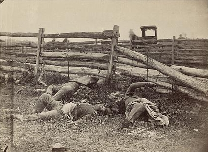 View of the Battlefield of Antietam. Four dead Confederate soldiers from General William Starke's Louisiana infantry along the Hagerstown Pike. Brady's Album Gallery No. 567. 1862. Library of Congress.