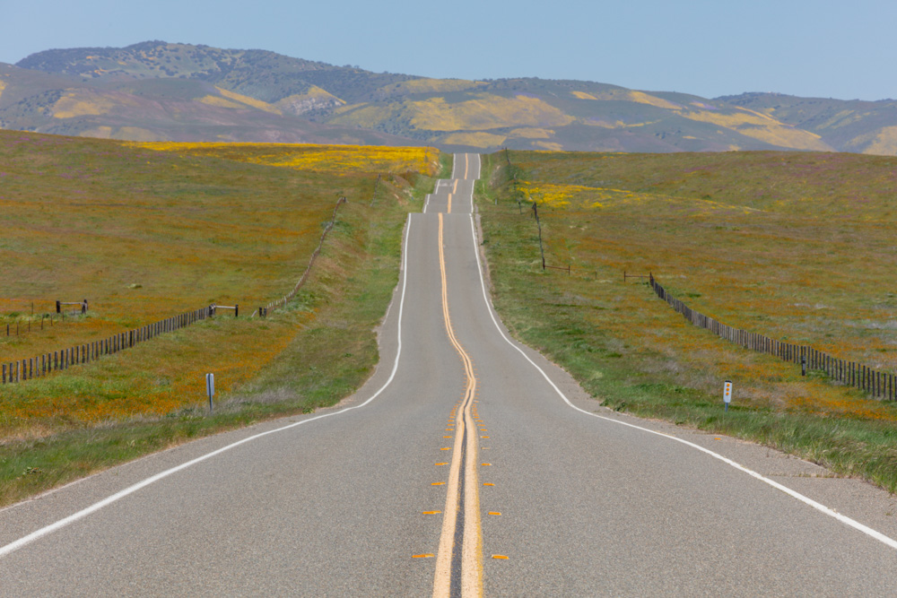 Road on Hills. Carrizo Plain. 2019. Canon EOS 5DSr.