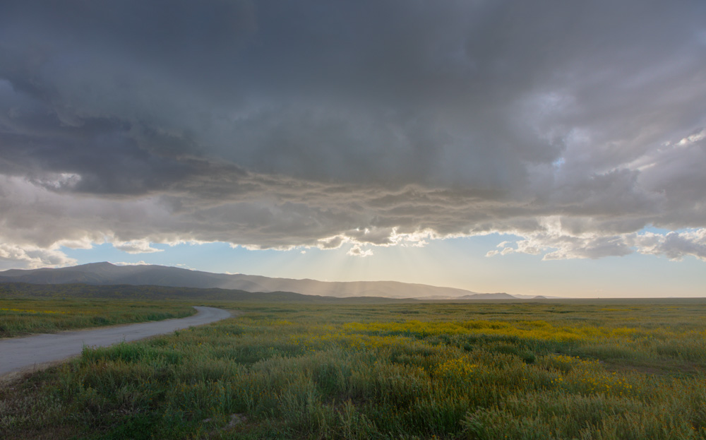 Rain Clouds and Rays at Dusk. Carrizo Plain National Monument. 2019.