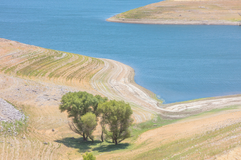 Lake-level Contours and Oaks. San Luis Reservoir. CA. 2019. Canon EOS 5DS R.