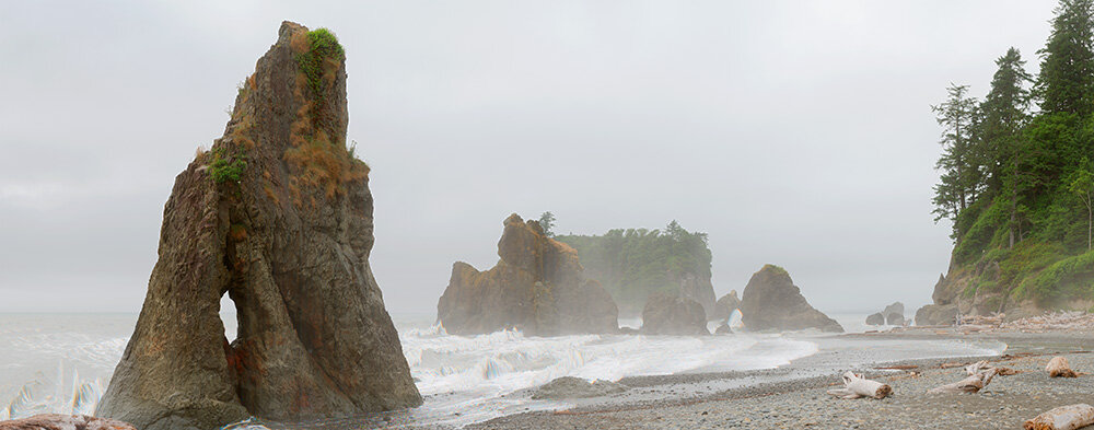 Ruby Beach. from With a New Eye: The Digital National Park Project. Betterlight Scanning Camera. 2002.