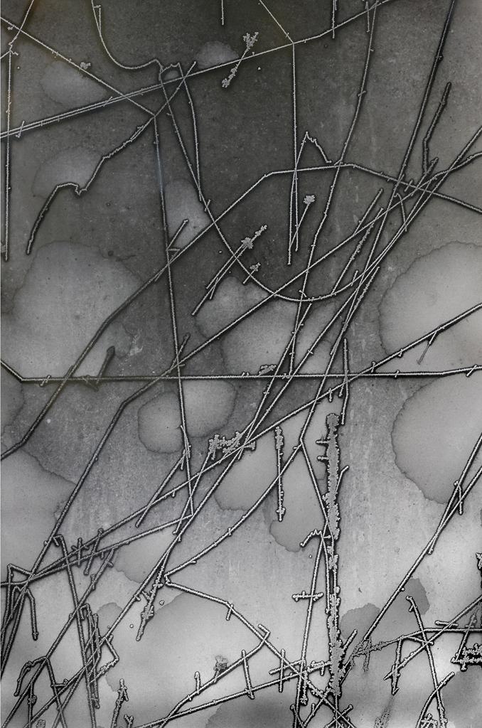 Burtnett_Daryl_4Storm Door Frost #1.jpg