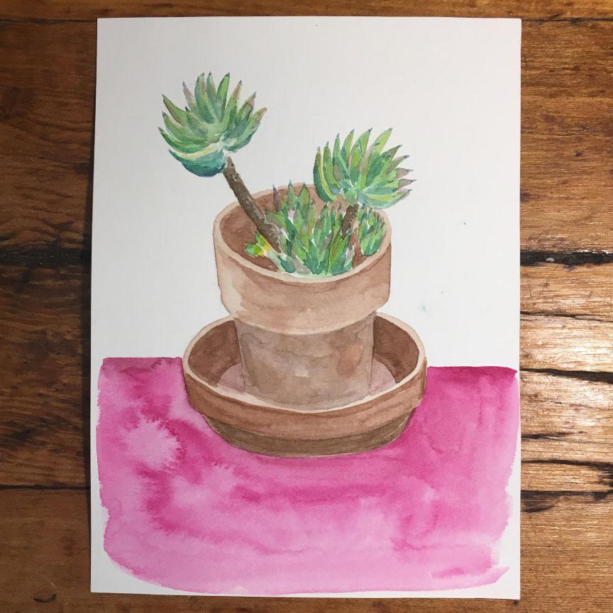succulent3watercolor.jpg