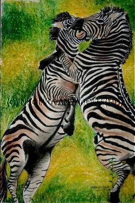 Zebra Stallions by Nkolika Anyabolu
