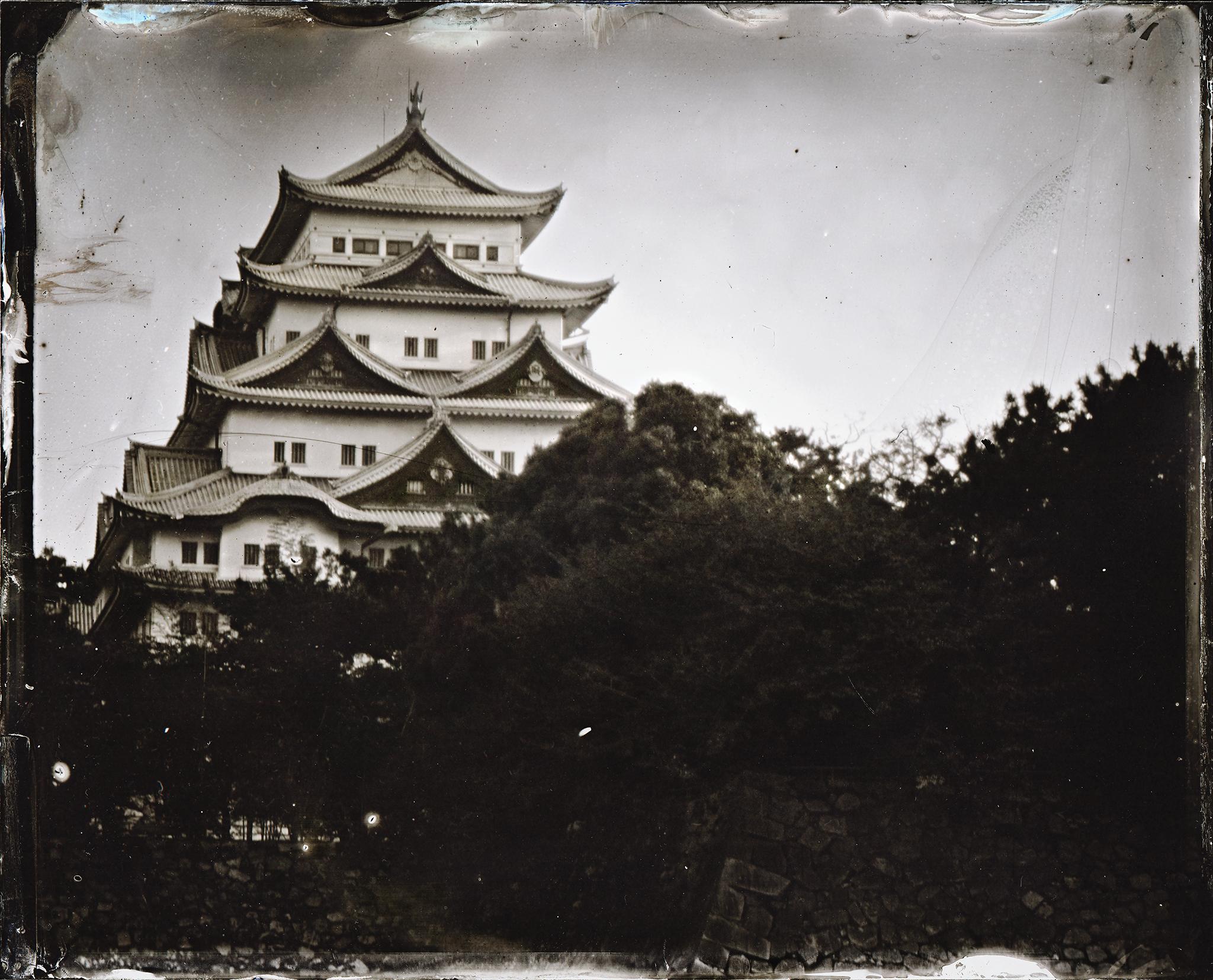 Nagoya Castle / 名古屋城