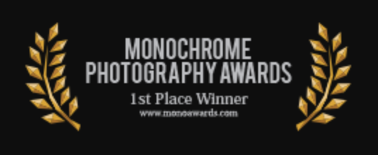 1st place monochrome awards 2018