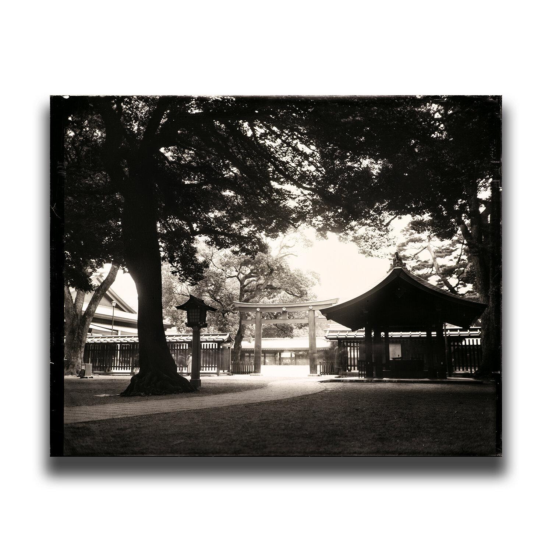 Meiji Shrine, Tokyo/東京・明治神宮/도쿄・메이지 신궁/東京・明治神宫