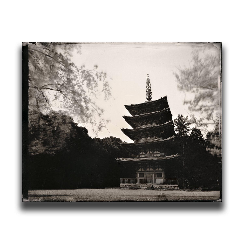 Kyoto・Daigo-ji(Temple)・The Five-storied Pagoda/京都・醍醐寺・五重塔桜/교토・다이고사・5층탑/京都・醍醐寺・五重塔