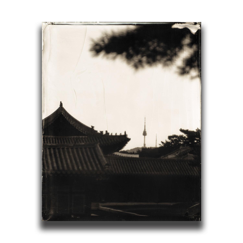 Changgyeong Palace/昌慶宮/창경궁/昌慶宮