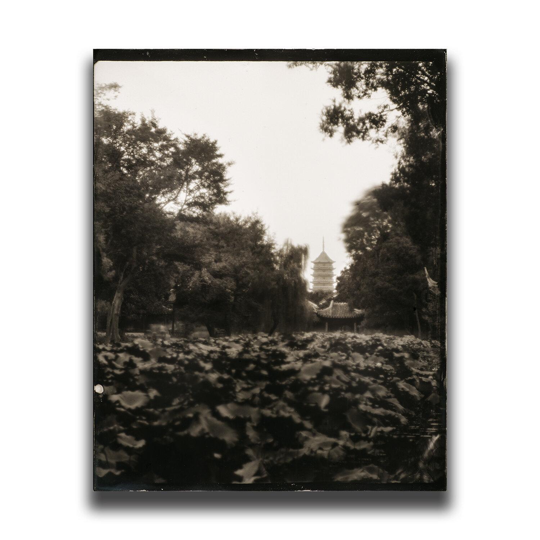 Suzhou・Classical Gardens of Suzhou・Humble Administrator's Garden/蘇州・古典園林・拙政園/쑤저우・고전원림・졸정원/蘇州・古典園林・拙政園