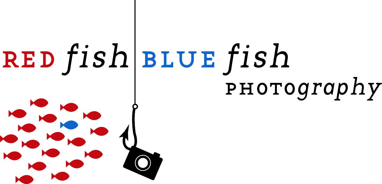 RFBF big logo_fish copy.jpg