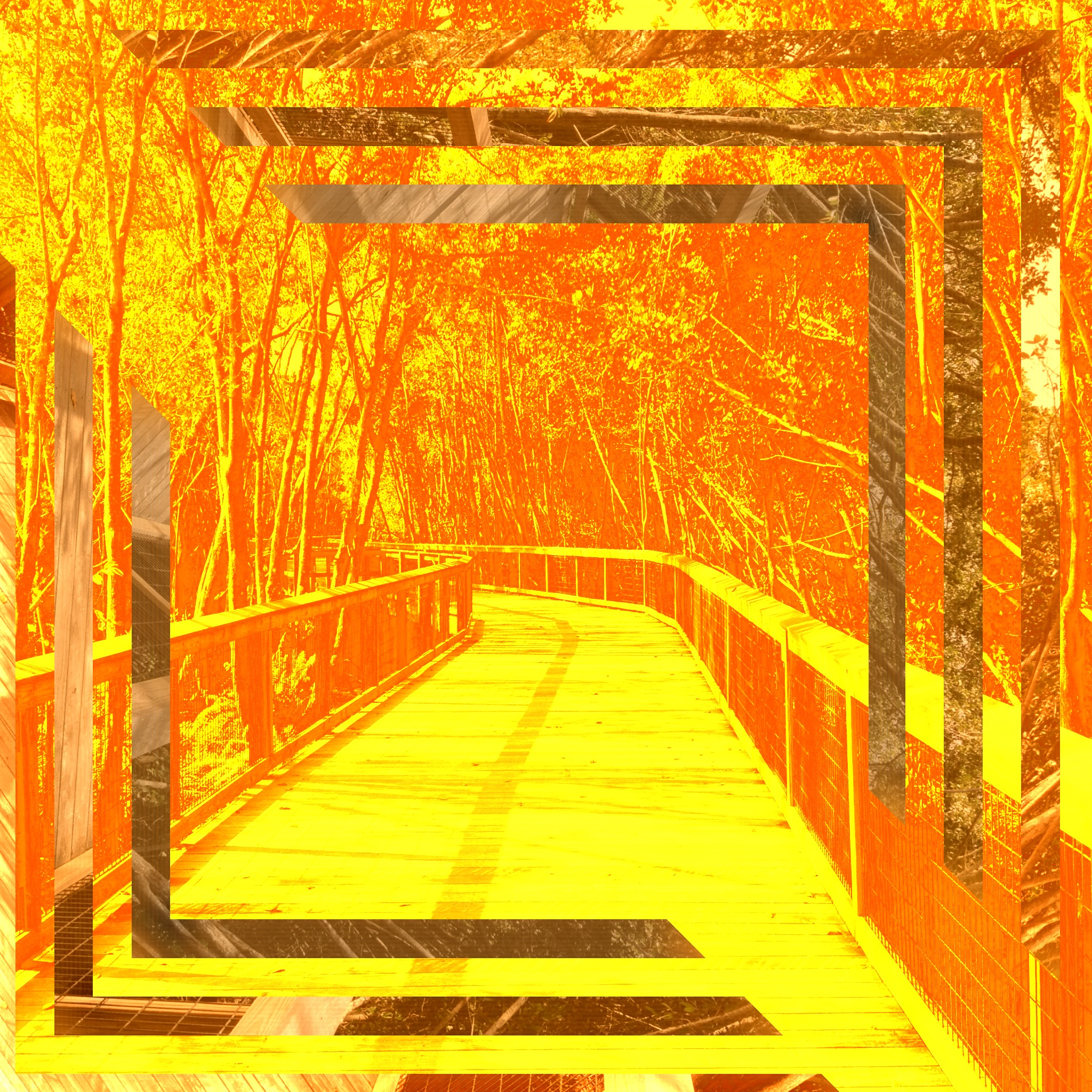 2015-03-12 07.32.36 HDR.jpg
