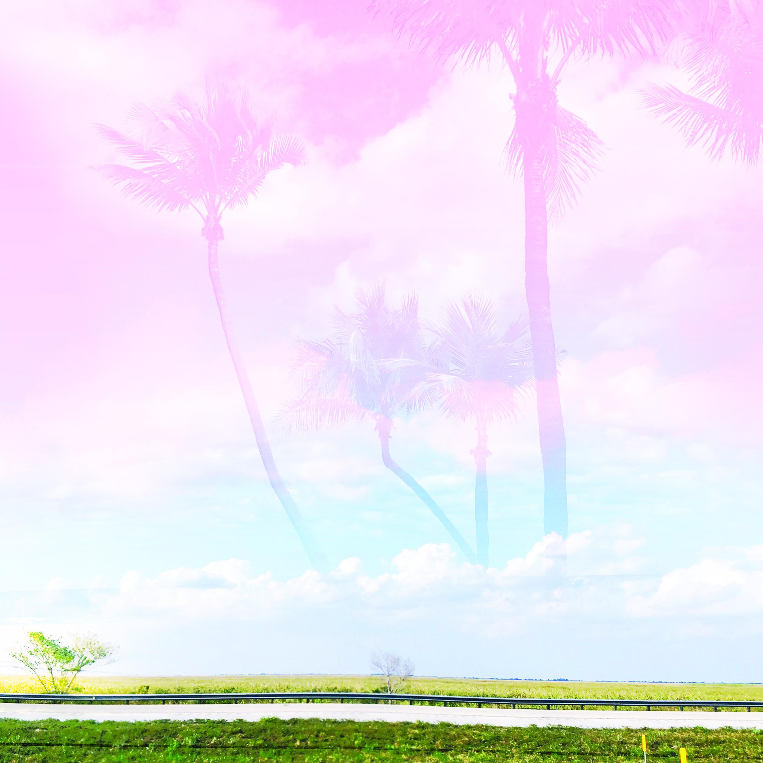 FloridaPink.jpg