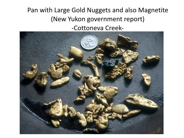 Gold Nugget Portfolio LIV 2.004.jpeg