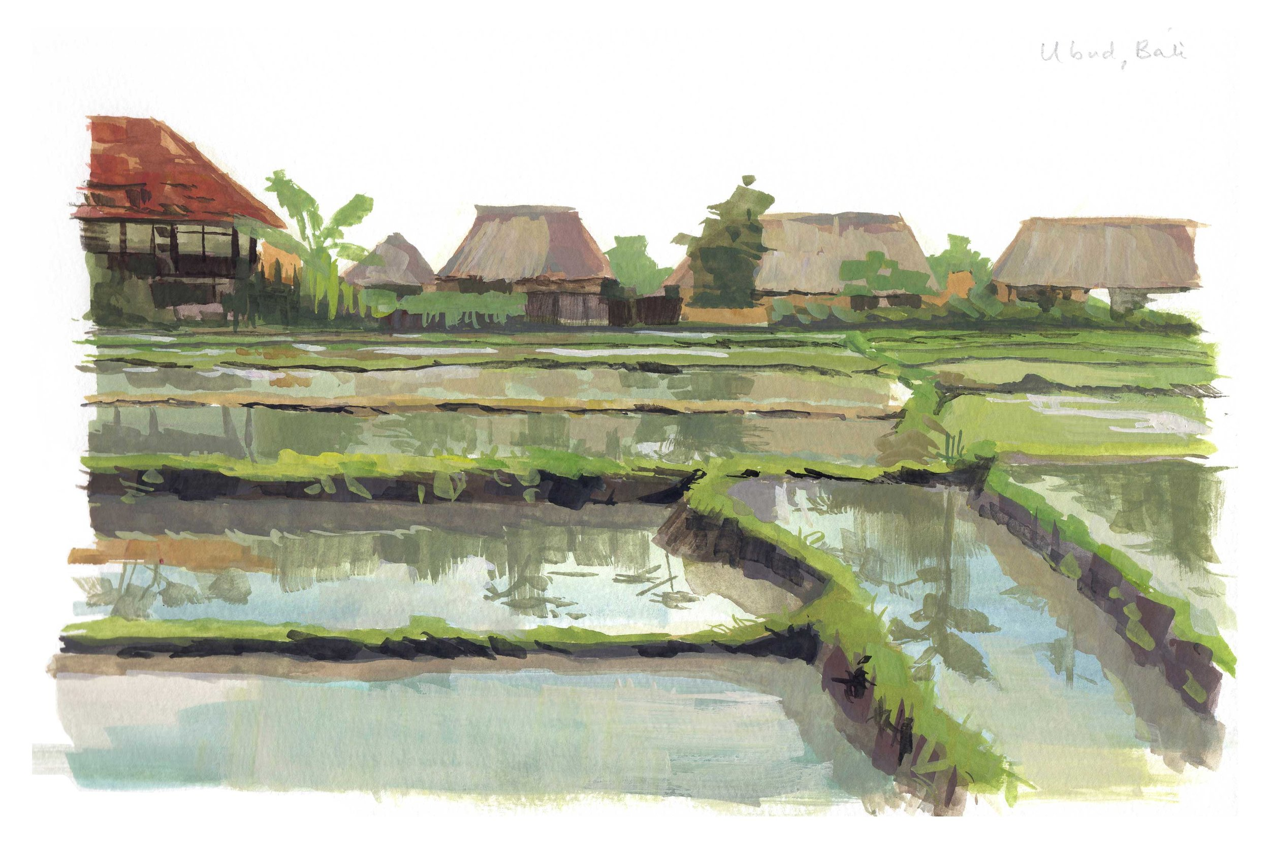 Bali, Priscilla Tey, Illustration Art