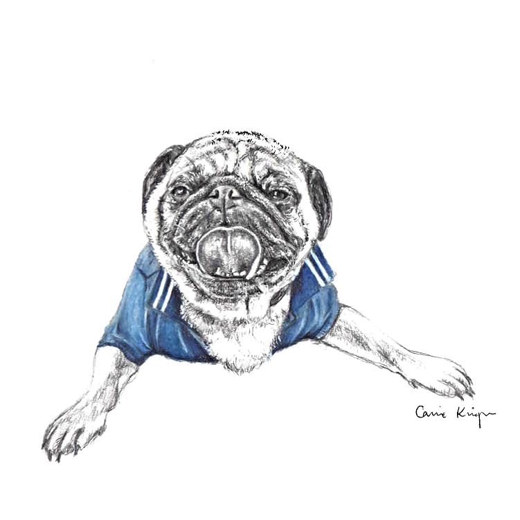 Pug Donut PNG.png