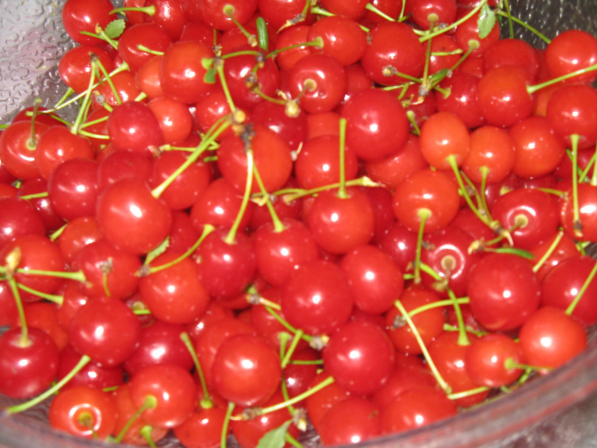 Our Sour Cherries