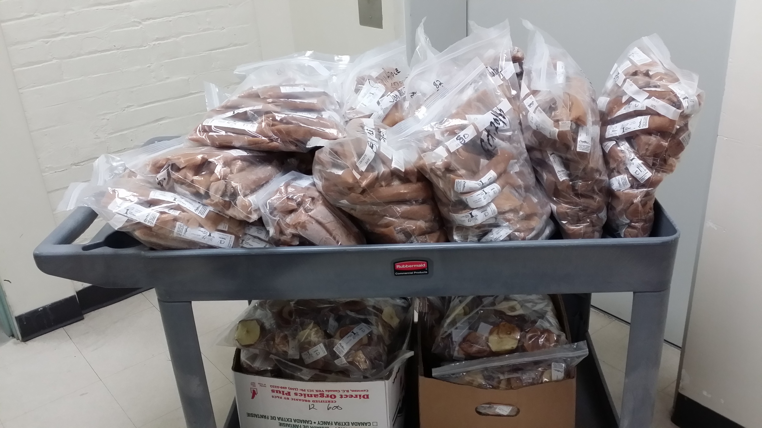 Delivery of applesauce tubes and apple chips to E4C.