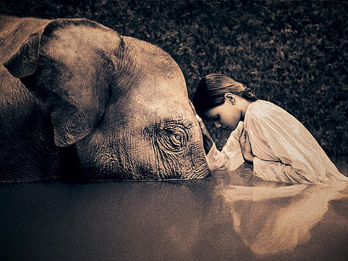 Another of my favorites, from Gregory Colbert