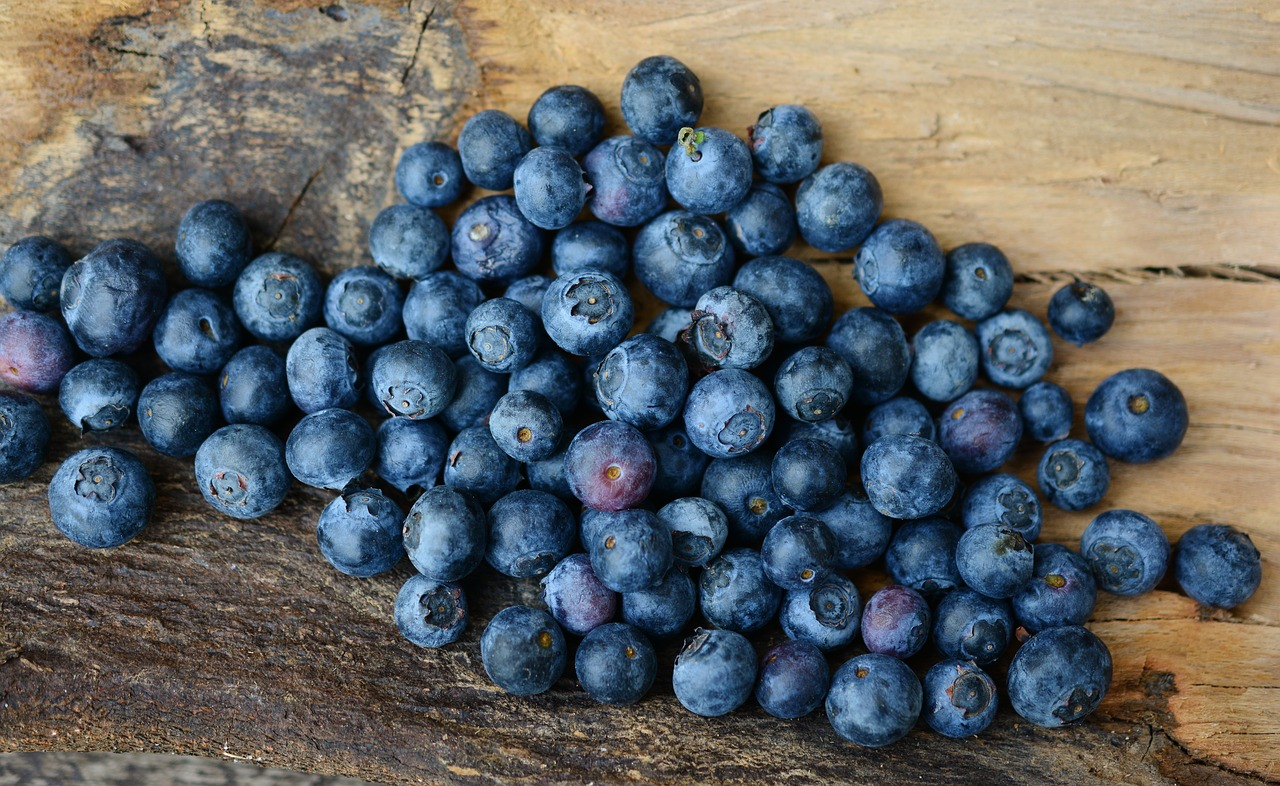 blueberries-2270379_1280.jpg
