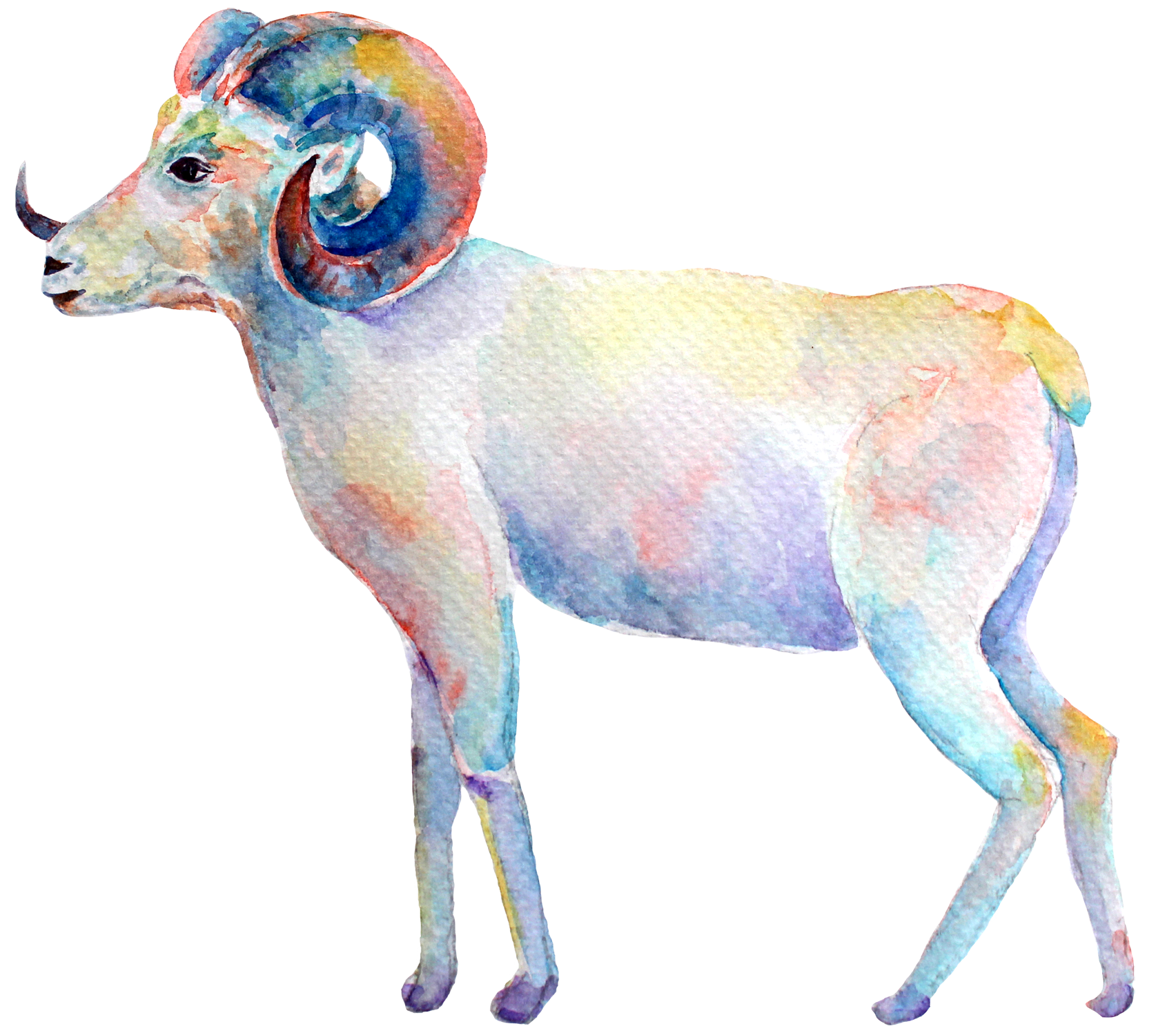 aries-new-moon.png