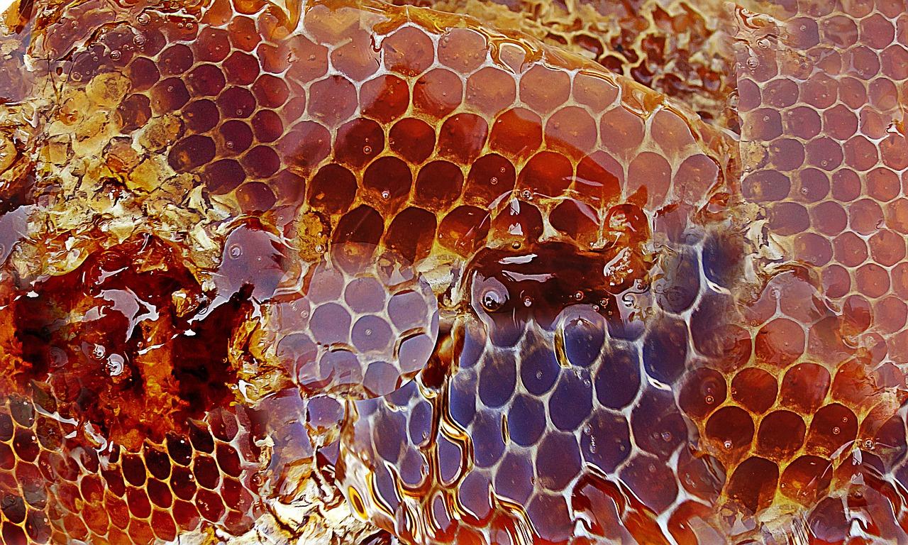 honey-medicine.jpg