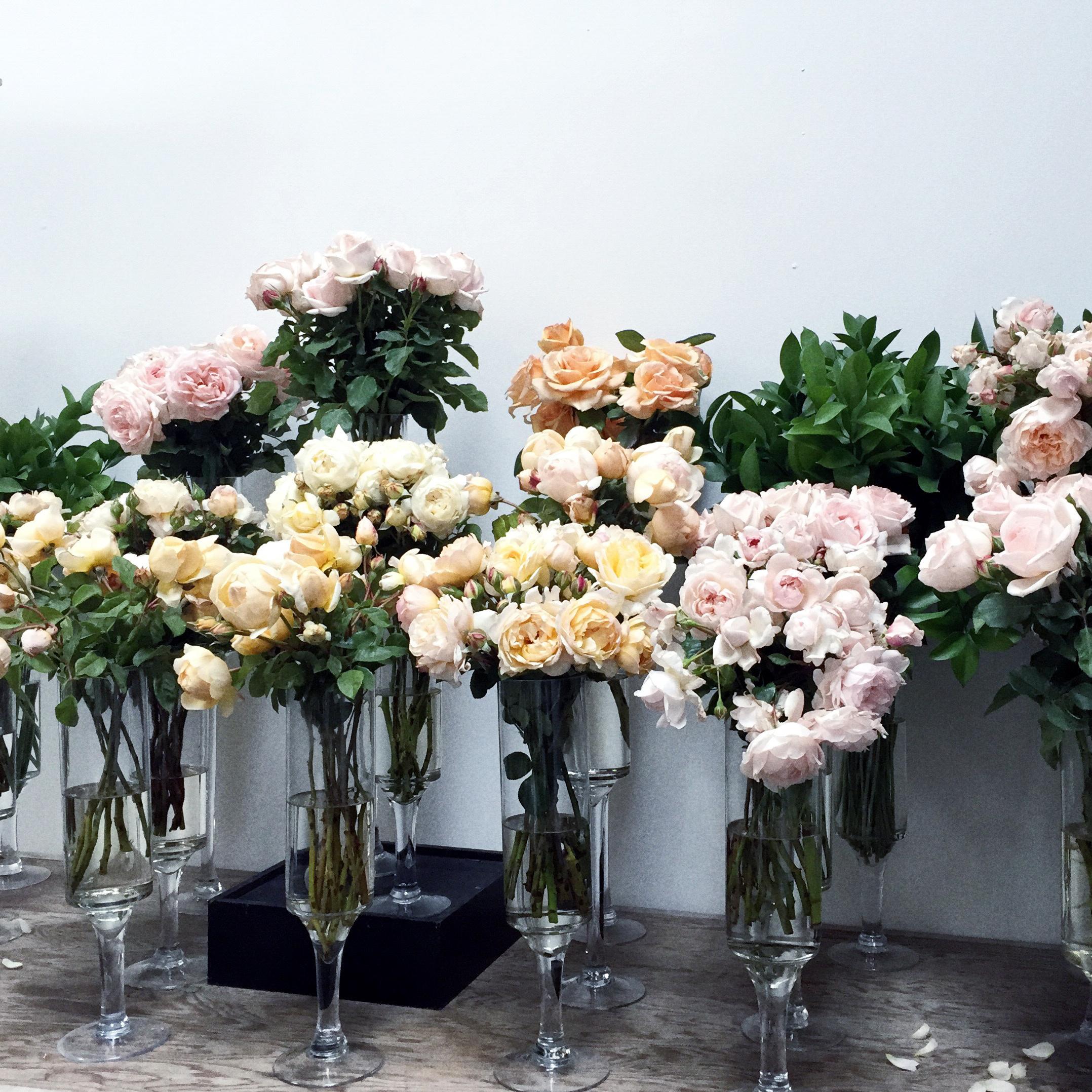 colorwyld_roses.jpg