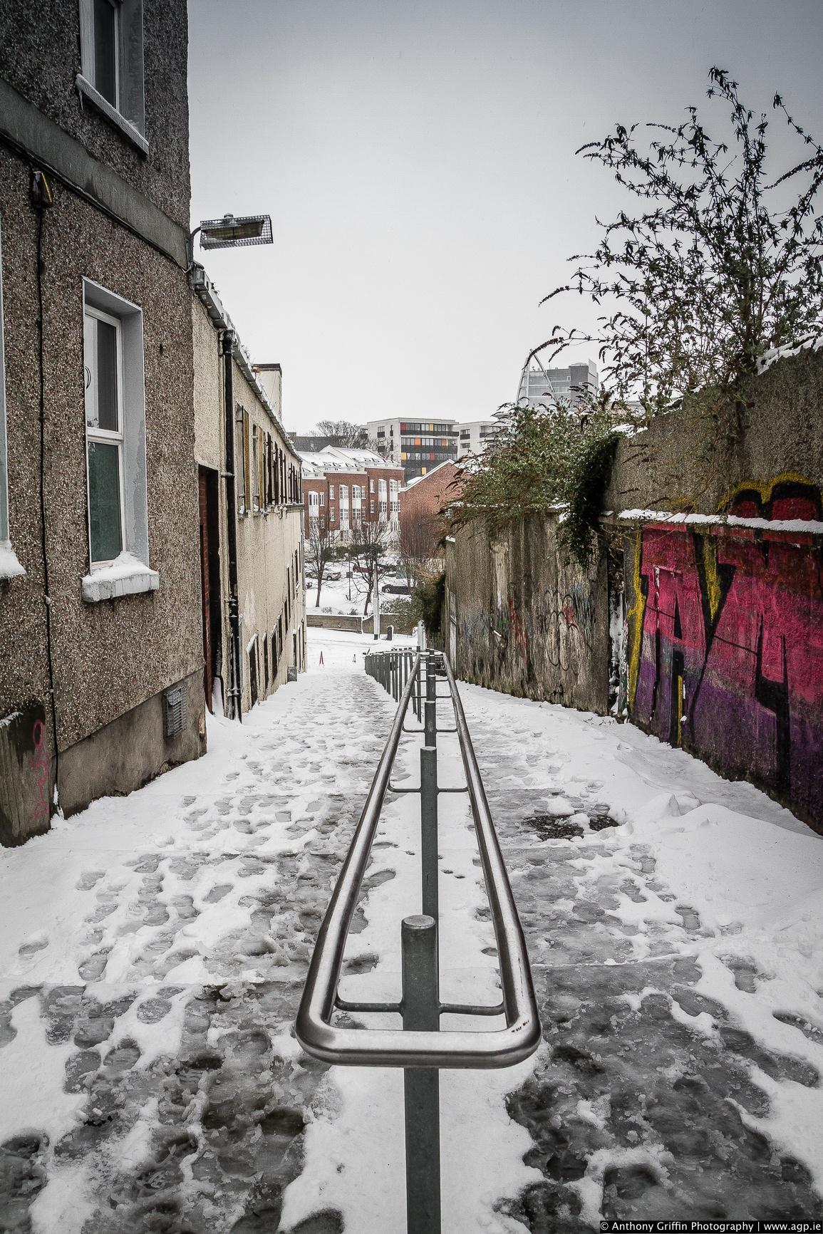 DCC_snow (7 of 98).jpg