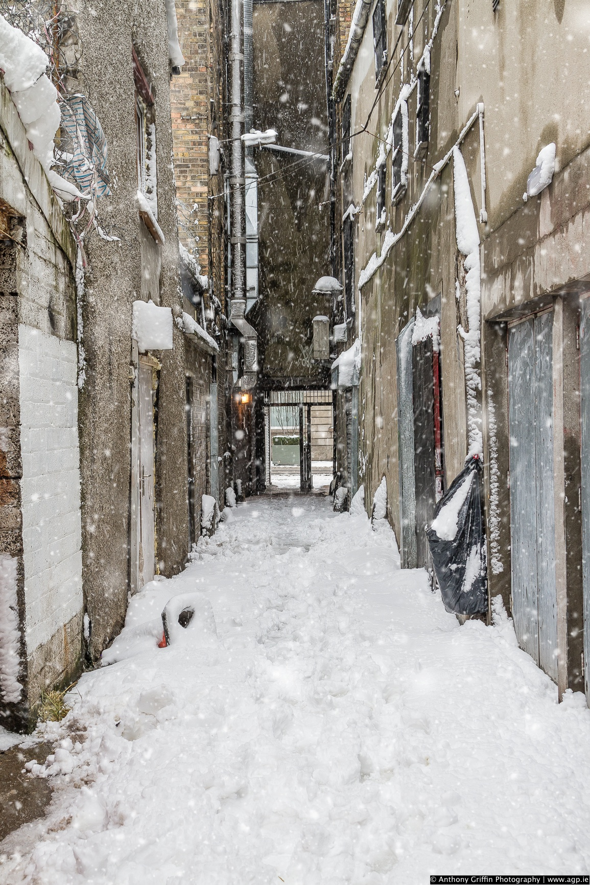 DCC_snow (30 of 98).jpg