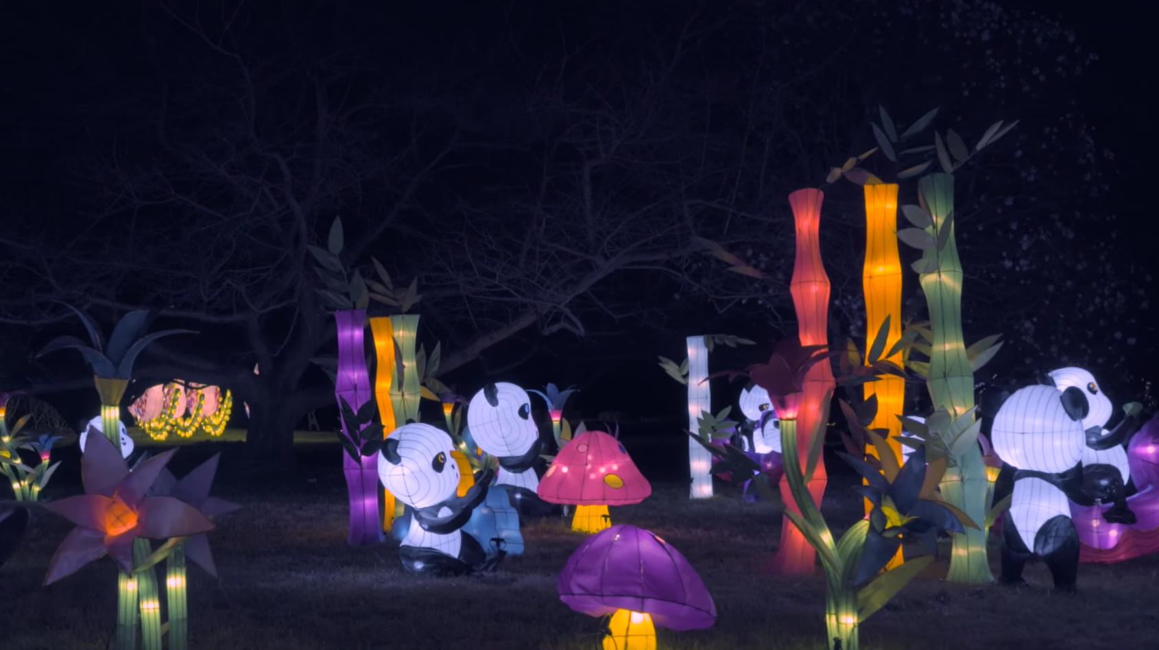 LanternAsia 2016 at Norfolk Botanical Gardens -  Image source