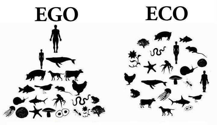 - Humans are non-privileged members of the earth's community of life.We share with other organisms requirements for life that are not totally under our control. We have the same origin as other creatures and share affinity for them. The earth's life processes brought all of us into existence, humans are dependent on other forms of life; without them we would cease to exist.