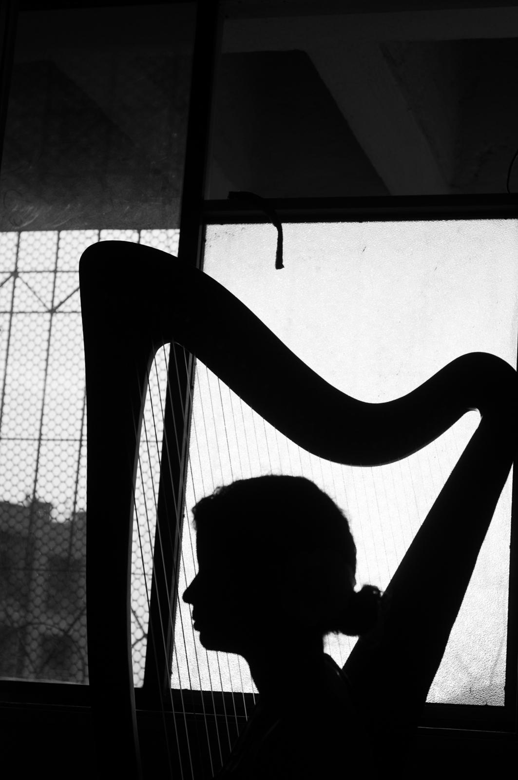 Photo by Prashin Jagger-12.jpg