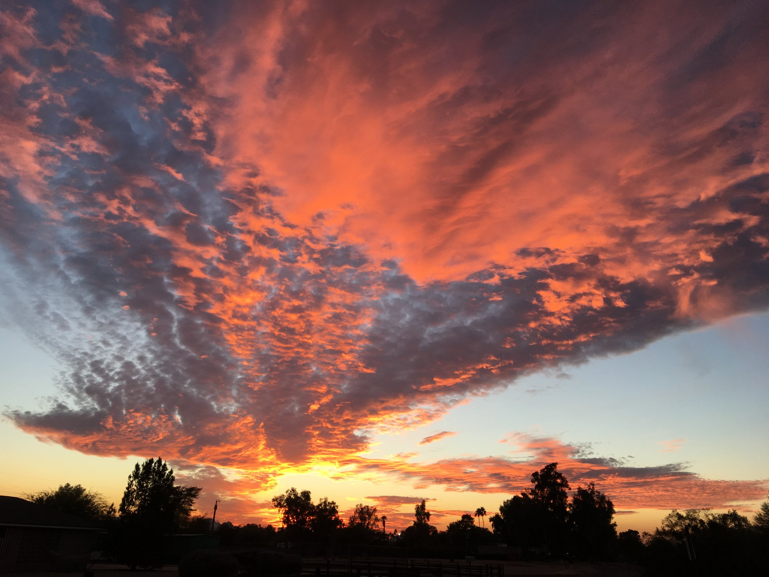 Sunsets - I took this picture from our front yard. Yes, the desert sunset is that vibrant & beautiful.
