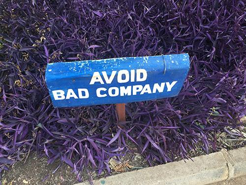 Good advice abounds.