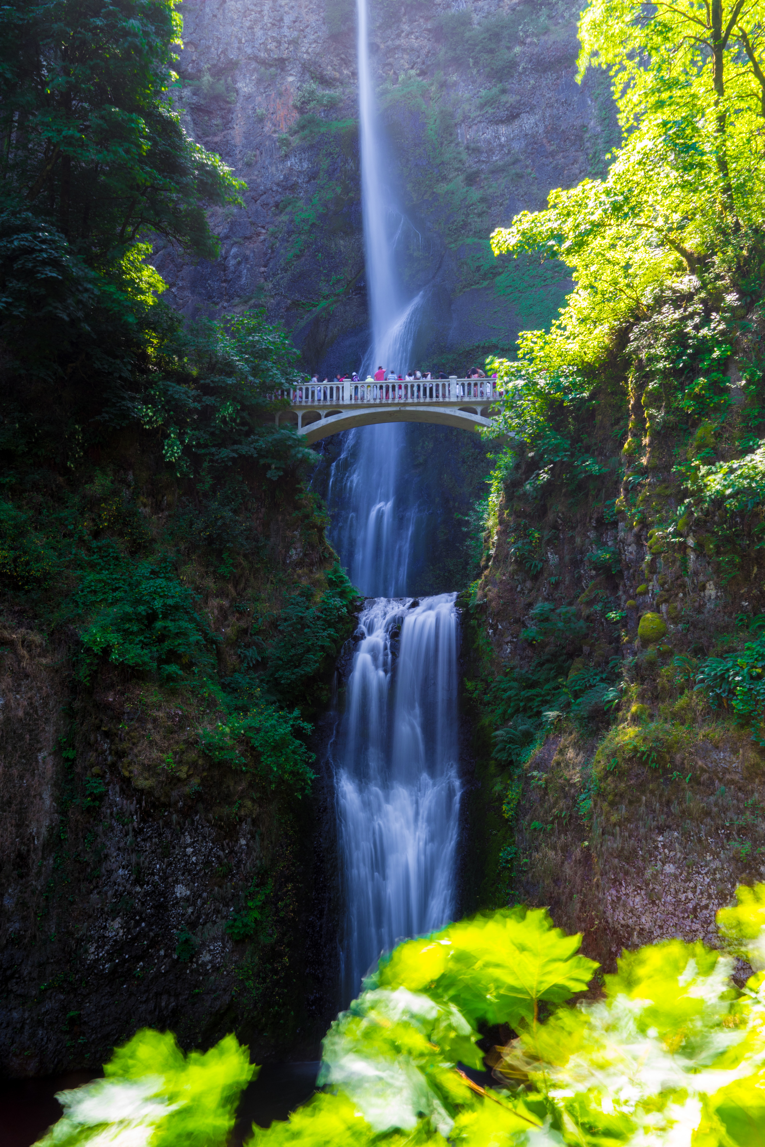 Multnomah Falls  is the tallest waterfall in Oregon.  The Benson Bridge in the foreground was built in 1914 by a Norwegian-American businessman Simon Benson (Wikipedia).