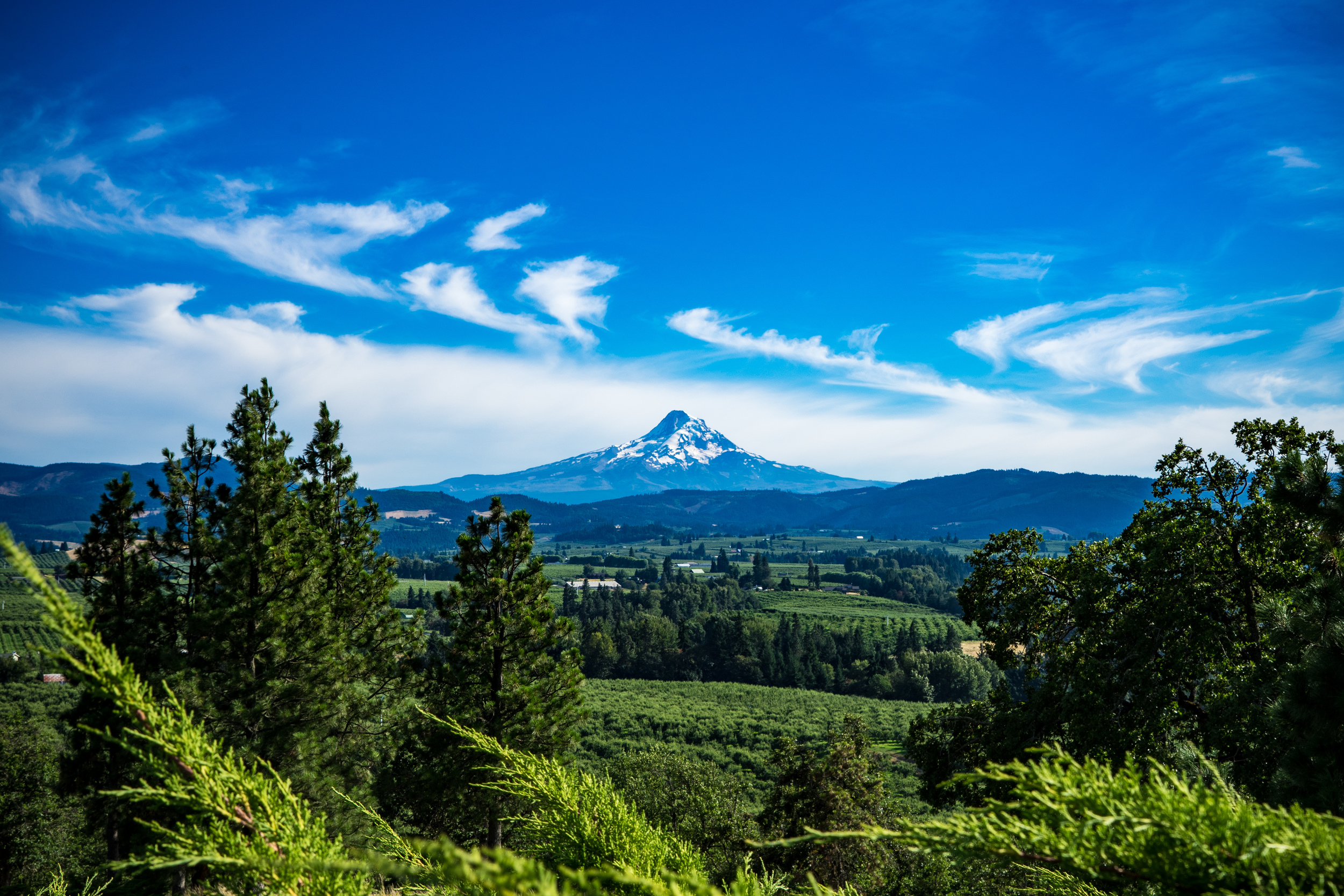 A view of  Mount Hood  from the panorama point just outside of Hood River.