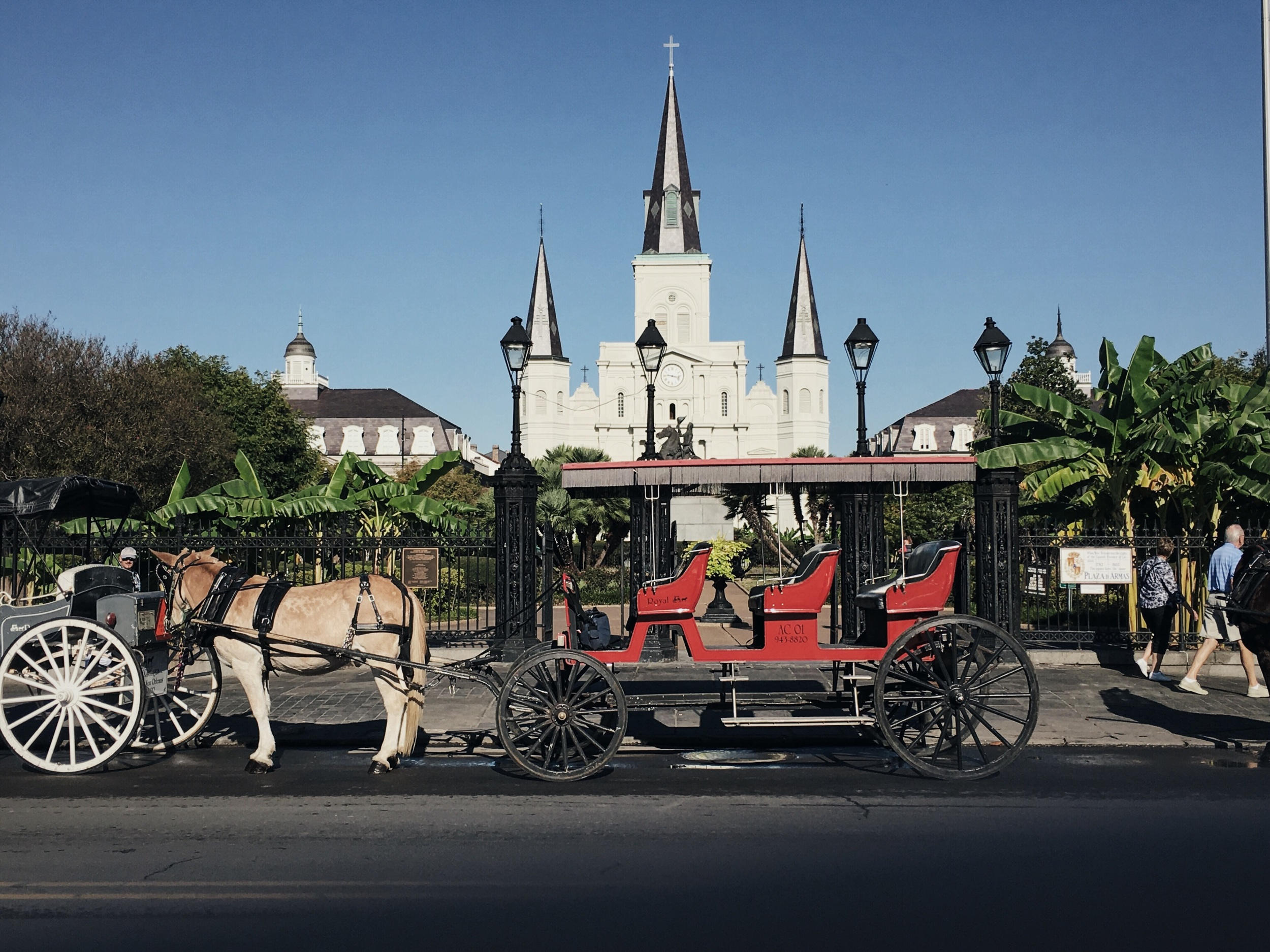 St. Louis Cathedral  is one of the oldest Catholic church in the country. Tourists can also jump on the horse carriage and sight-see around the area.