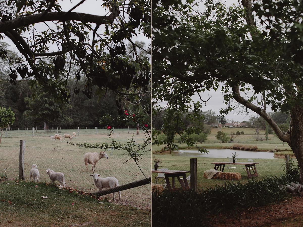 005_Zoe+Lachlan_Blog.jpg