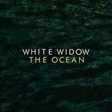 The Ocean - Hi.jpg
