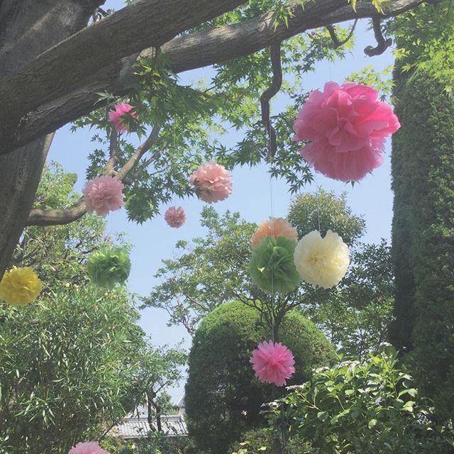 ㅤㅤㅤㅤㅤㅤㅤㅤㅤㅤㅤㅤㅤ ㅤㅤㅤㅤㅤㅤㅤㅤㅤㅤㅤㅤㅤ ㅤㅤㅤㅤㅤㅤㅤㅤㅤㅤㅤㅤㅤ ㅤㅤㅤㅤㅤㅤㅤㅤㅤㅤㅤㅤㅤ #北島生花店 #つきみ野 #横浜うかい亭 #結婚式 #wedding #weddingflowers #ウエディング #ガーデンウエディング #party #ペーパーポンポン #花 #花のある暮らし