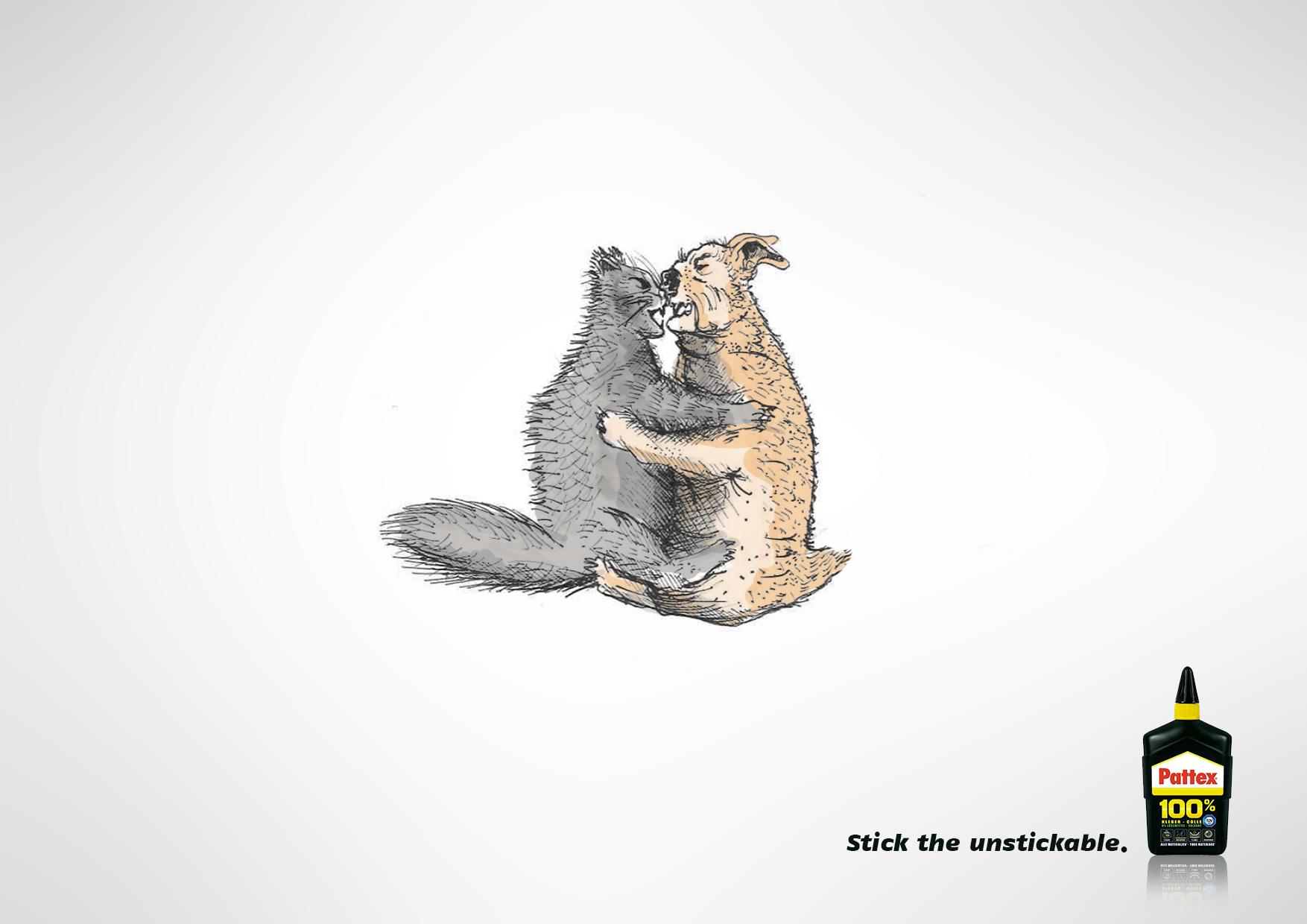 stick_all_-_cat_vs_dog.jpg