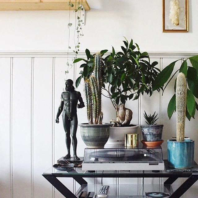 send me some cactuses 🌵  #flowerpower #vinyl #ceramics