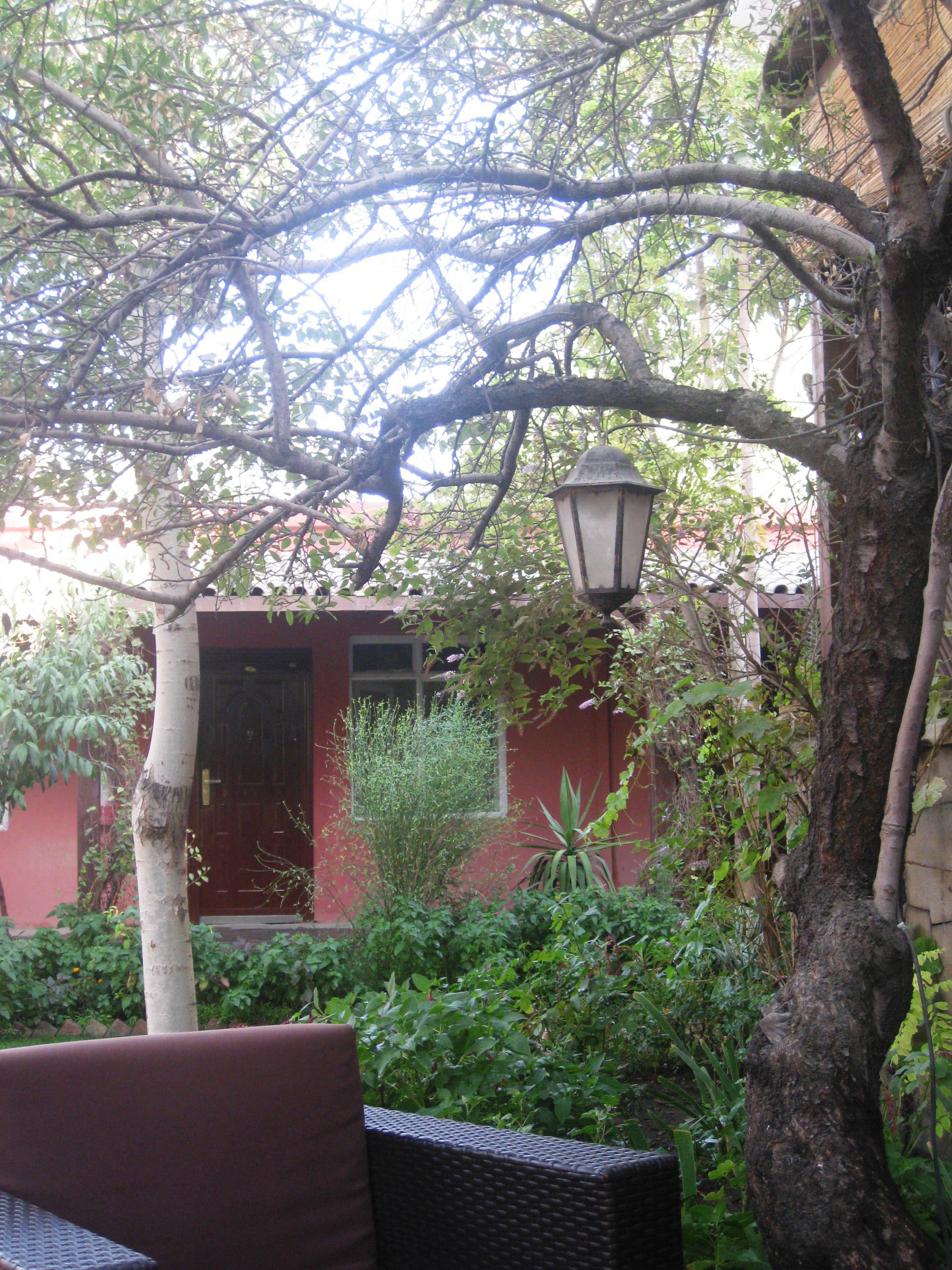 The garden in my guest house. Sometimes different can be just fine!