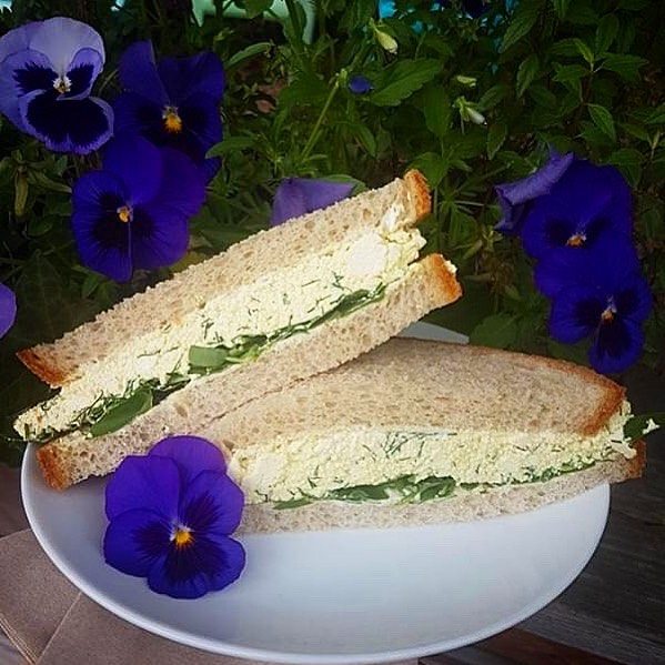 "For this weeks sandwich we did something a bit different. Vegan ""Egg"" salad with watercress. It's eggceptional. You will be vegan us for more. . . . #sandwichoftheweek #trinitybellwoods #vegan #tofu"