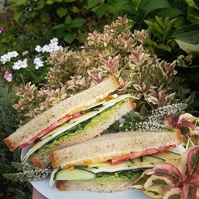 As lunch would havarti it, this week's sandwich is as cool as a cucumber. You won't want to wheat for this one. It will be a race against the guac to get it. . . Havarti and avocado sandwich with cucumber, tomato and spinach . . #sandwichoftheweek #havartiinyourmouth #trinitybellwoods #vegetarian #punqueen #ournabourhoodhasthe bestgardens #🍅
