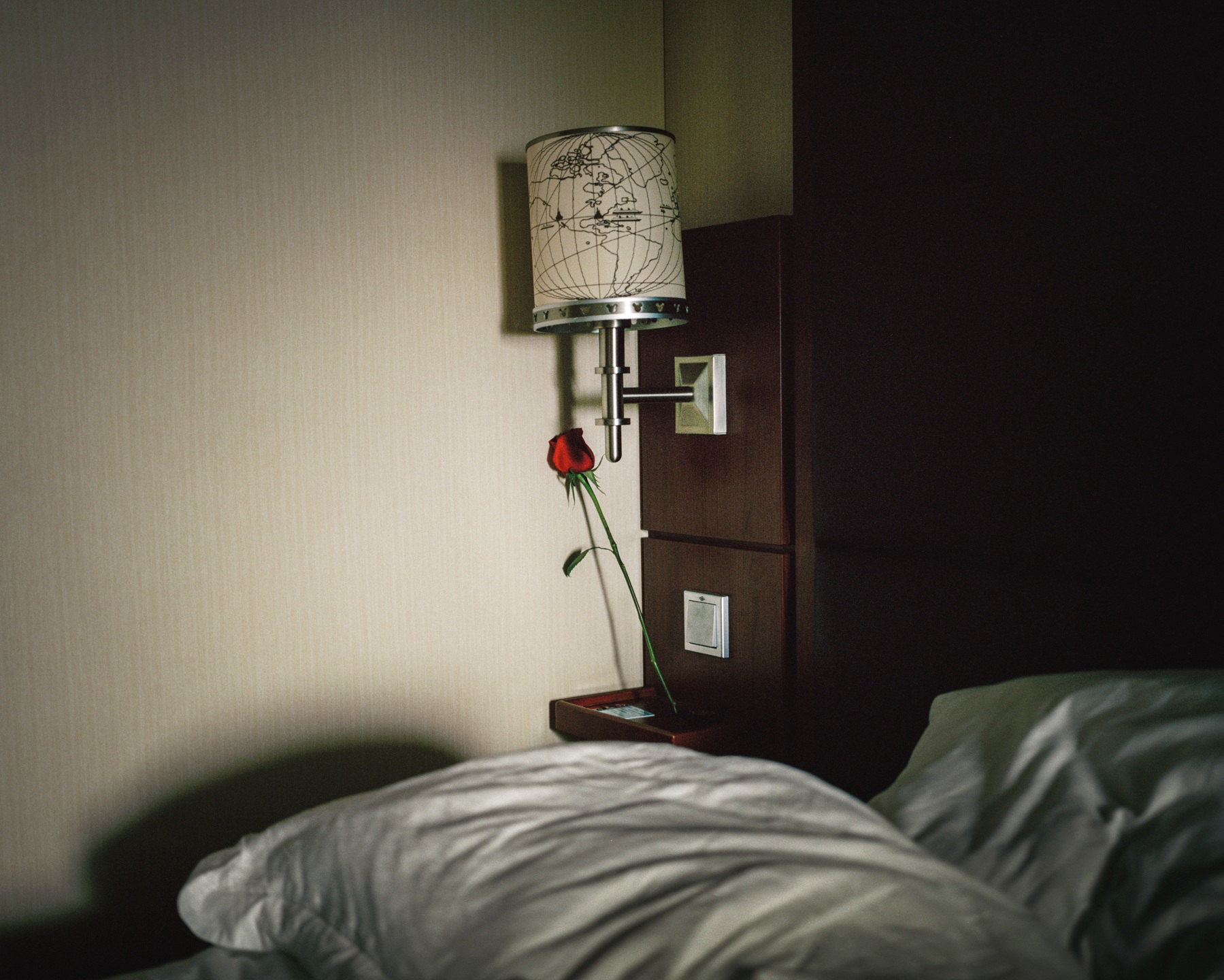 DIS-HotelRose.jpg