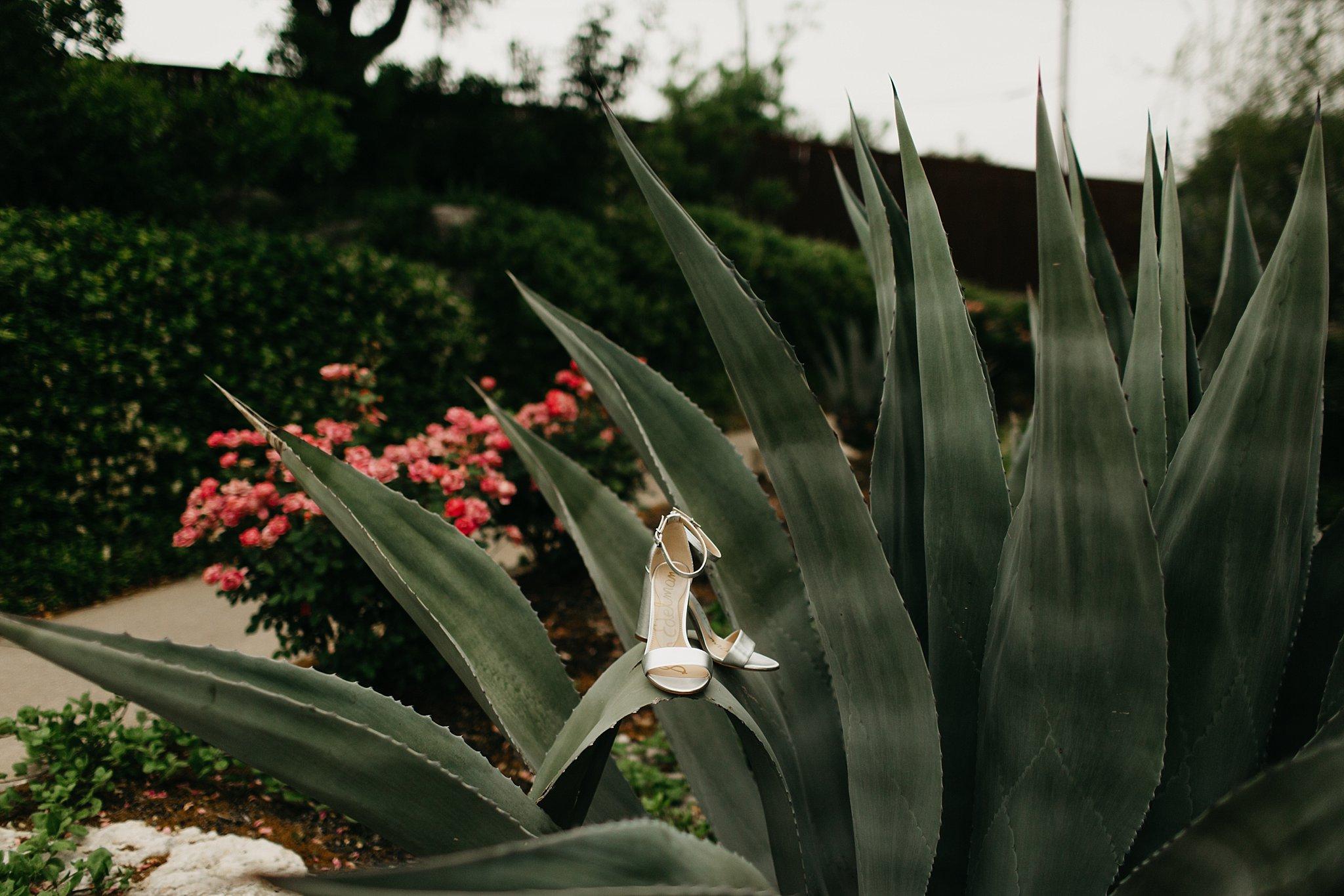 Wilderlove Co_Austin Texas_Vintage Villas Hotel_Wedding Photography_0002.jpg