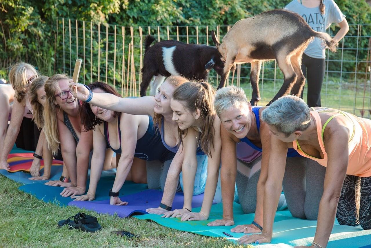 Goat Yoga Nashlorette.jpg