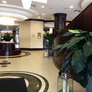 Hilton garden inn Toronto airport lobby